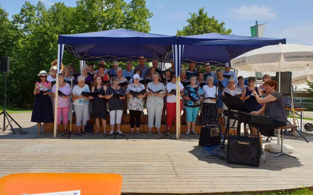Der Männerchor und male:vox beim Chortreffen der Singfreunde Warmbronn